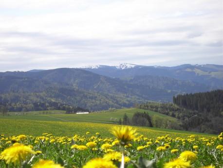 Blick von St. Märgen auf den Feldberg