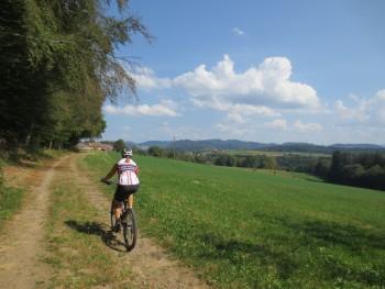 Brettentaltrail - Kloster Tennenbach