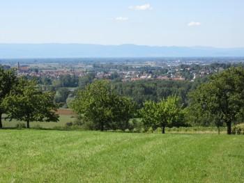 Blick über Ettenheim Richtung Vogesen