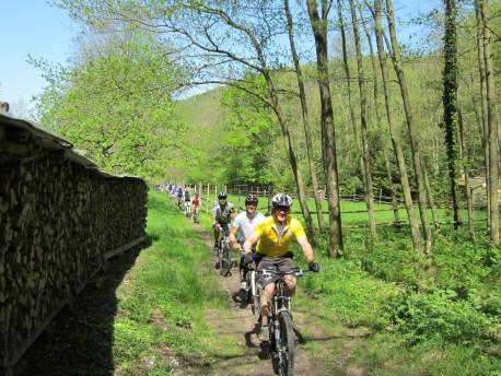 Trail im Schwarzgräble