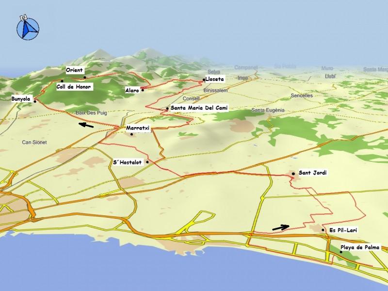 Playa De Palma Orient Biketour 4 You