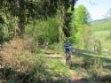 Rund um Ettenheim